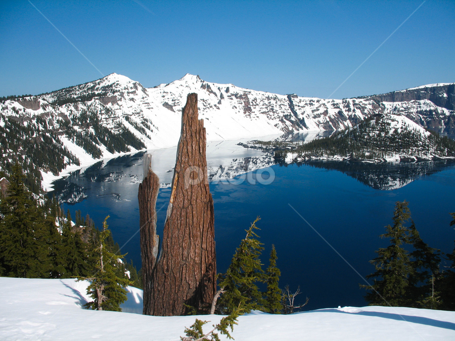 Crater Lake Lookout by Shanin Theiss - Landscapes Waterscapes ( water, oregon, clear water, mountains, crater lake, crater lake national park, glacier melt )
