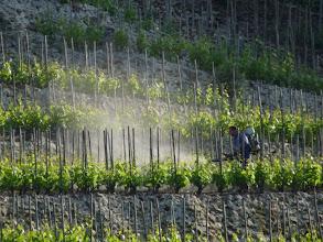 Photo: Ces pesticides que nous respirons