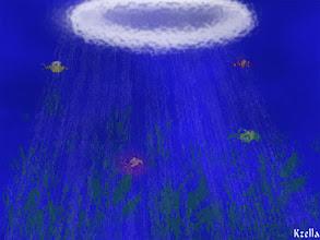 Photo: Víz alatt