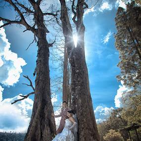 by Pt Seputra Adi Winata - Wedding Bride & Groom