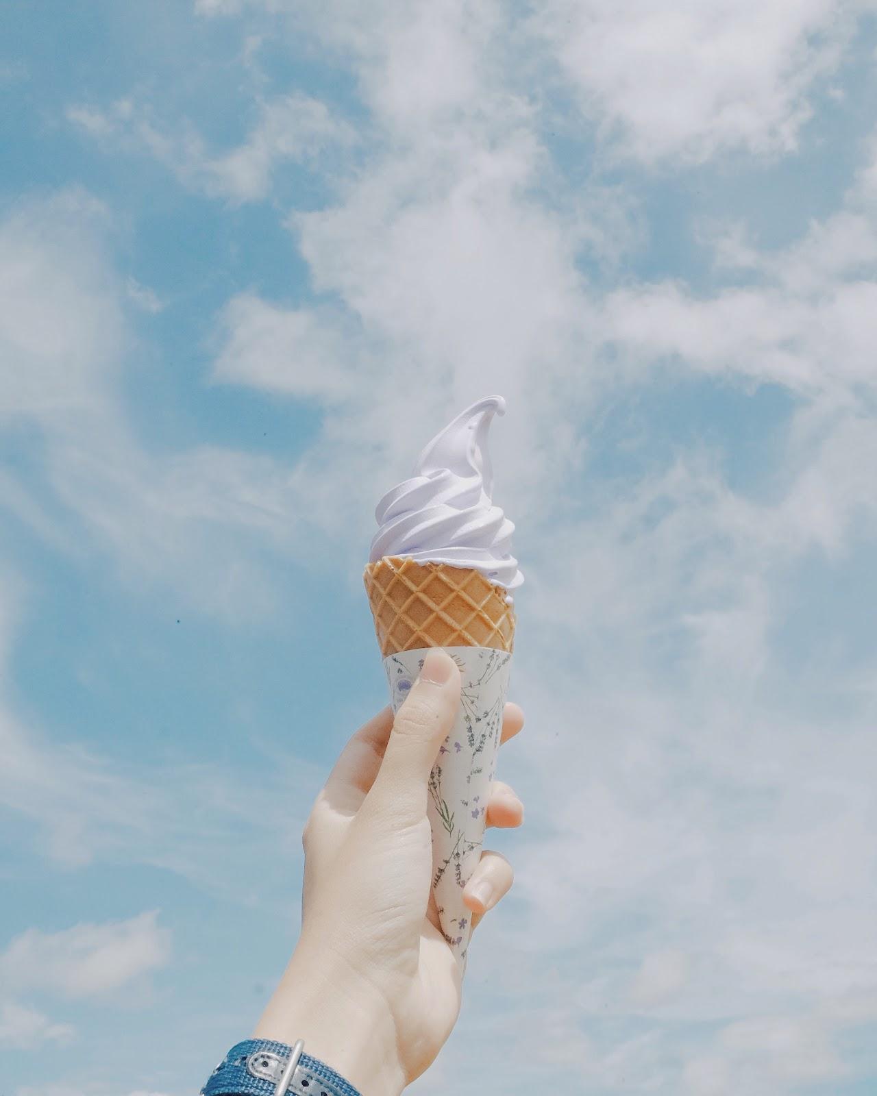 Loạt trải nghiệm mùa hè đỉnh như anime Nhật Bản: Bắt bọ cánh cứng, ngắm đom đóm trong rừng và ăn kem cho đến khi nào nổ não thì thôi! - Ảnh 11.