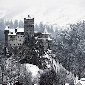 Bran Castle by Alin Gavriluta - Buildings & Architecture Public & Historical (  )