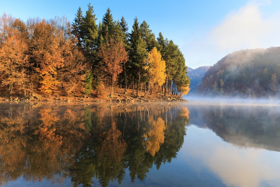 Firiza lake by George Marcu - Landscapes Waterscapes ( mirrored reflections, foggy, mountain, autumnal, autumn, fog, forest, lake,  )