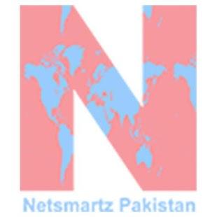 Netsmartz Pakistan : Best IT Services in Pakistan - náhled
