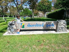 Photo: Clark at Shorebird Park