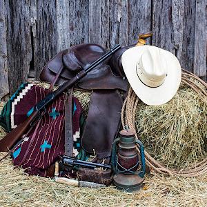 cowboy7 043.jpg