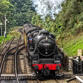 Stop look and listen by Andrew Lancaster - Transportation Trains ( beauty, rail, british, transport, tracks, transportation, beautiful, signals, classic, vintage, coal, steam, railway, train )