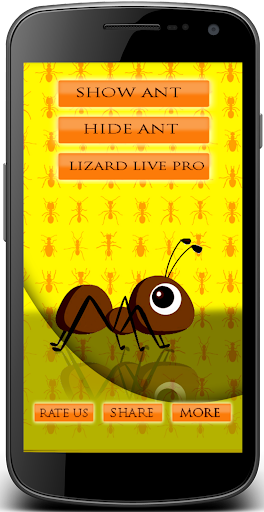 Ant in phone