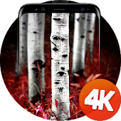Tree Wallpapers 4k Android APK Download Free By Ultra Wallpapers