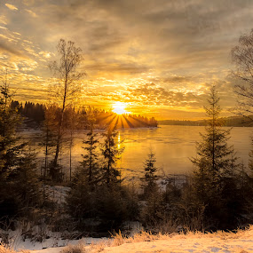 Hedmark Norway by Rose-marie Karlsen - Landscapes Sunsets & Sunrises ( winter, sunset, snow, sunrise, light, norway, , garyfonglandscapes, holiday photo contest, photocontest )