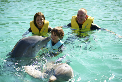 Bahamas-Dolphin-Encounter.jpg - Experience a dolphin encounter with the family while visiting Paradise Island in the Bahamas.