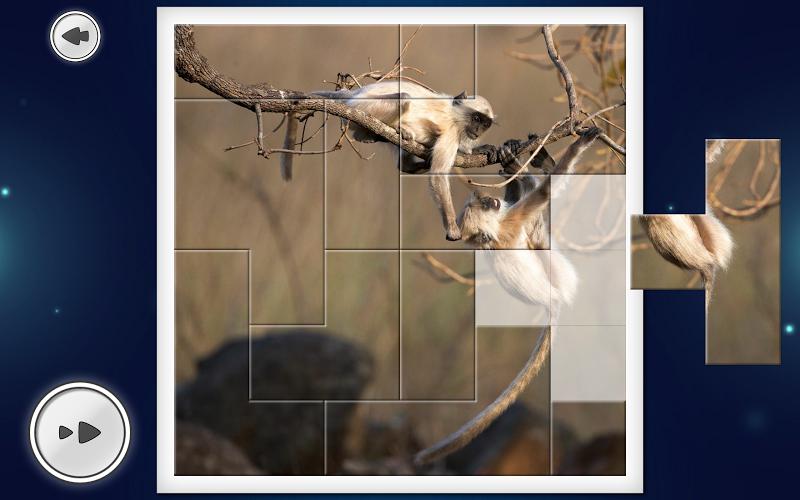 IMAGEine Premium Screenshot 8