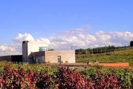 Afbeeldingsresultaat voor Losada Vinos de Finca