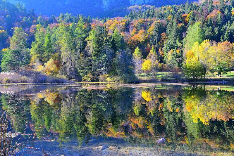 primi colori d'autunno di isidoro