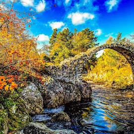 Carrbridge in the autumn sunshine  by Gordon Bain - Buildings & Architecture Bridges & Suspended Structures ( scotland carrbridge autumn sunshine )