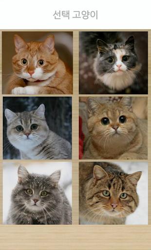 고양이 조수 시뮬레이터