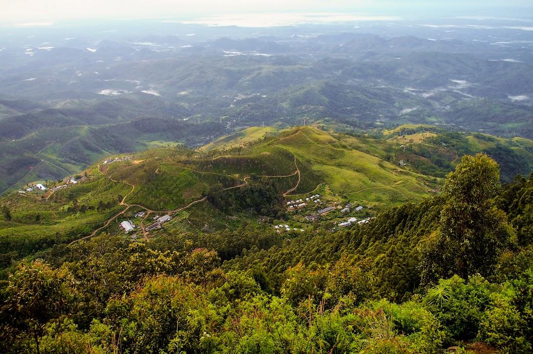 The road to Lipton's Seat Sri Lanka