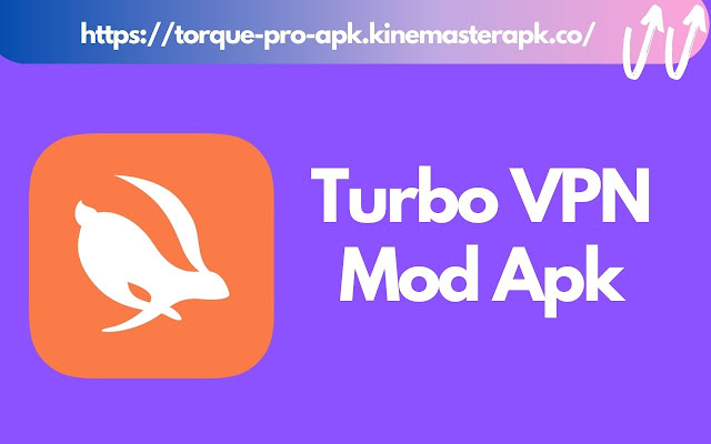 Turbo VPN Pro + Mod Apk  [100% VIP Unlocked]