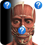 Anatomy Quiz Free Icon
