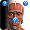 Anatomy Quiz Free file APK for Gaming PC/PS3/PS4 Smart TV