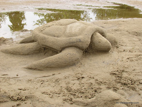 Photo: Turtle sand sculpture at Alburg Dunes State Park by Raven Schwan-Noble