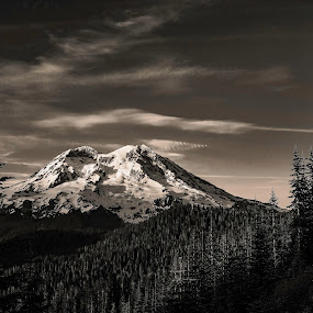 Mount Rainier by Dale Slater - Black & White Landscapes ( mountain, nature, outback, forest, snowy volcano )