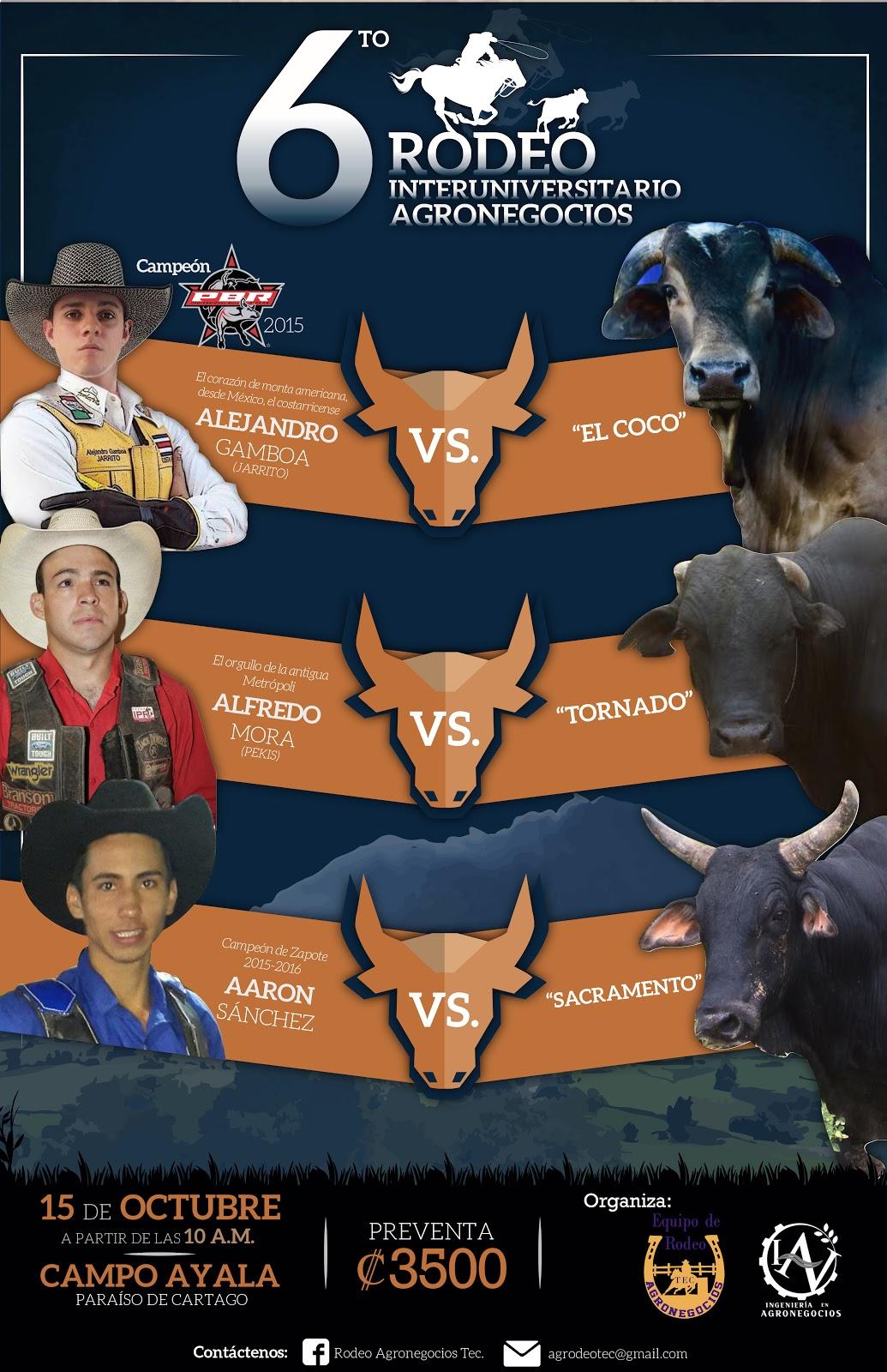 afiches toros montadores.jpg