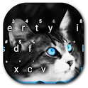 Blue Eye Kitty Cat Keyboard Theme icon
