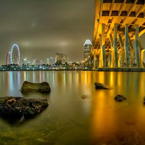 by Partha Roy - City,  Street & Park  Skylines