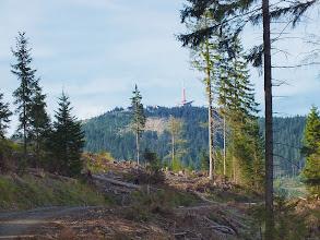 Photo: Cesta na Lysou z Ostravice přes kobylík. Na tomto hřebenu jsou hodně patrné následky květnových větrných poryvů.  Díky polomu je vidět vrcholek Lysé, předtím se mohlo na nějaké výhledy klidně zapomenout.