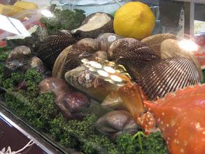 Photo: These mollusks are STILL alive!!!!