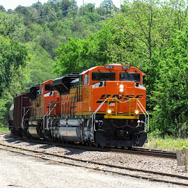 BNSF 9072 by Rick Covert - Transportation Trains ( color, locomotive, spring, trains, arkansas )
