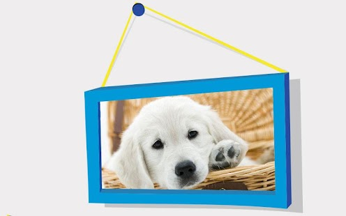 Puppies Puzzle: Retriever - náhled
