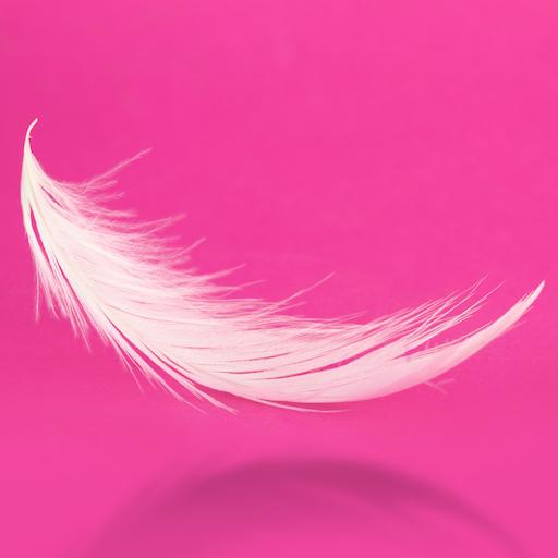Pinkbird Studio avatar image
