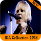 Sia Music Offline for PC-Windows 7,8,10 and Mac