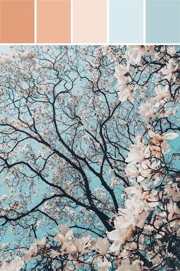 Blossom Palette - Brand Board Template