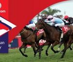 Vodacom Durban July : Greyville Racecourse