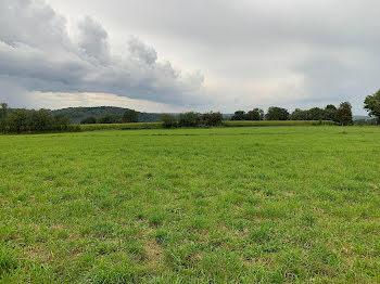 terrain à Saint-Bonnet-Briance (87)