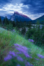 Photo: Evening Light on Mount Rundle - Banff National Park - Alberta, Canada