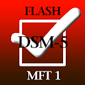 MFT Flash 1 icon