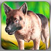 Wild Dog Sim Hunter Prey 3D