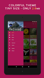 Pulsar Music Player Pro (Cracked, Ads Free) 10