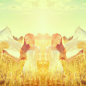 Insta Mirror: Mirror Photo icon