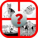 Guess the Animal - Trivia Game icon