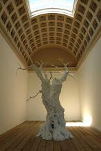 Photo: Dies ist ein weiss bemalter Originalabguss eines 2000-Jahre alten italienischen Olivenbaumes.