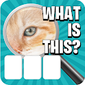 Zoom Pic: Close Up Picture Quiz 2021 icon
