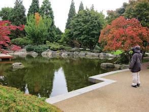 Photo: Japanese garden