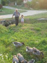 Photo: tata.. juhj most nem szaladnak világgá