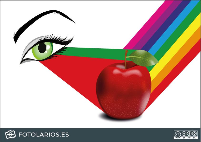 Cómo vemos el color