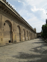 Photo: After entering the walls around the Great Mosque, there was a large garden area.